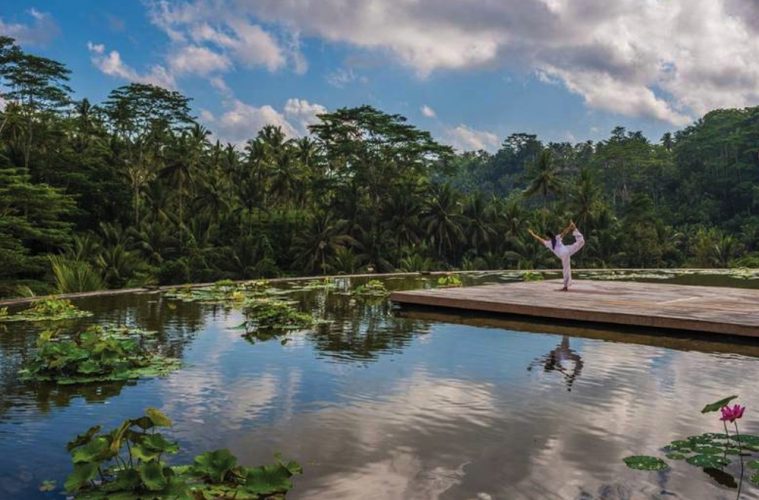 Yoga retreats in Bali: Best classes in Ubud, Canggu, and Sanur for meditation
