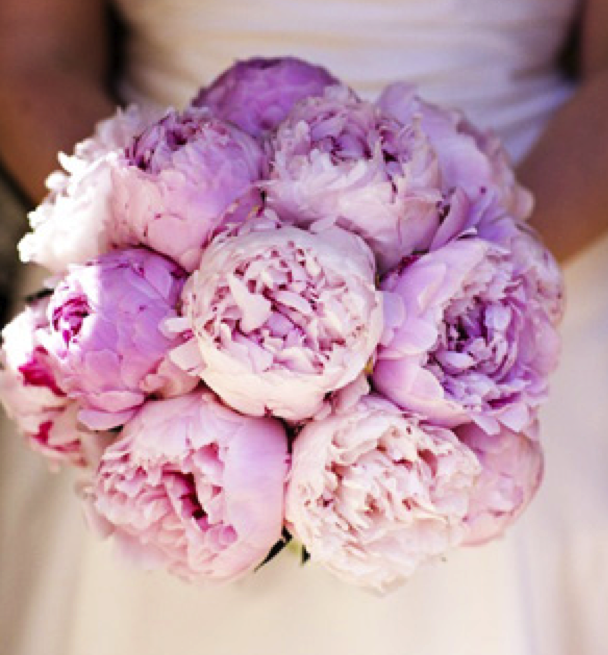 Wedding Flowers In Season Your Guide To Picking Flowers During